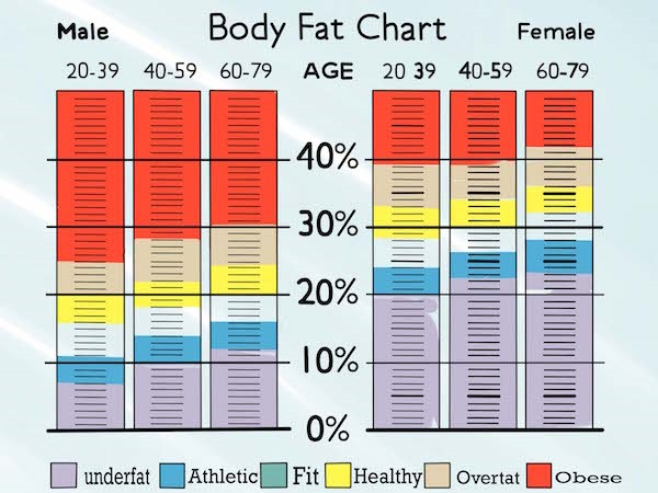 Why You Need To Know Your Body Fat Percentage | Zach Moore
