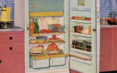 What Happens to The Food You Bring Home and What to do About It