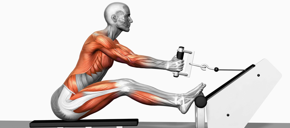 Why it's Important to Incorporate Exercises That Work the Left and Right Side of the Body Independently